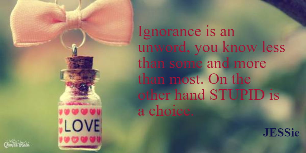 Ignorance is an unword, you know less than some and more than most. On the other hand STUPID is a choice.